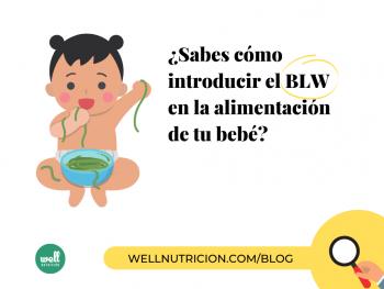 nutricionista-experto-blw